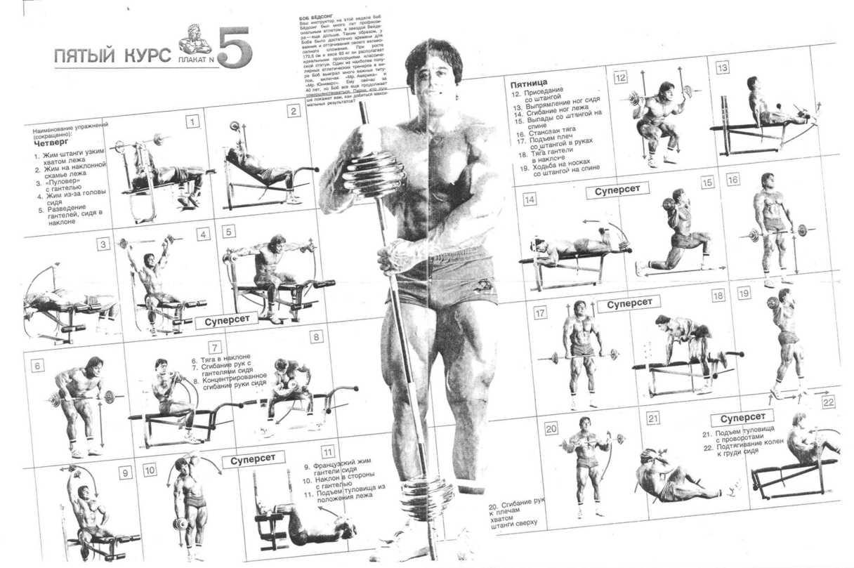 Книга джо вейдера система строительства тела скачать